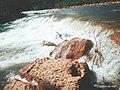Kali yawei(sungai muara YAWEI).jpg