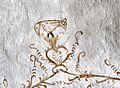 Kalkmaleri Kyndby Kirke (detalje).jpg