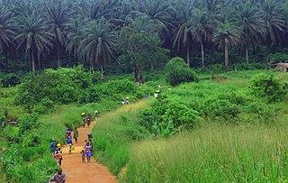 Guinean forest-savanna mosaic