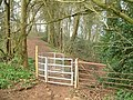 Kissing Gate near the Devil's Pulpit - geograph.org.uk - 752097.jpg