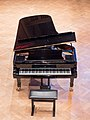 Kissingen Steinway & Sons piano 0417RM0613.jpg