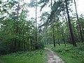 Kotelniki, Moscow Oblast, Russia - panoramio (103).jpg