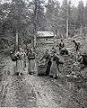 Kratky, Frantisek - Sumava, sber travy (ca 1890).jpg