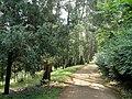 Kunming Botanical Garden - DSC02750.JPG