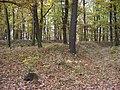 Kunratický les, obléhací tábor (02).jpg