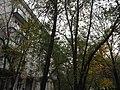 Kuntsevo District, Moscow, Russia - panoramio (105).jpg