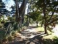 L'ile aux moines - panoramio (5).jpg