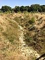La Rivière Asséchée EcoParc des Carrieres Fontenay sous Bois 1.JPG