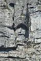 La cara de Jesus.JPG