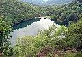 Lac des Perches (984 m) (3).jpg