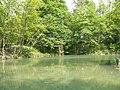 Lago, parque de La Acebera - panoramio.jpg