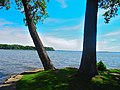 Lake Mendota seen though two trees - panoramio.jpg
