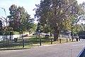 Lamberhurst Village Green - geograph.org.uk - 1513103.jpg