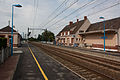 Lamotte-Beuvron IMG 0484.JPG