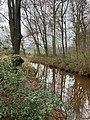 Landgoed Dickninge Drenthe Netherlands January 2021 18 44 12 179000.jpeg