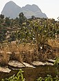 Landscape With Wall, Yeha, Ethiopia (3141133991).jpg