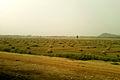 Landscape view at Vizianagaram town.jpg