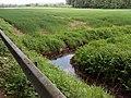 Landschaftsschutzgebiet Strothheide Melle Datei 35.jpg