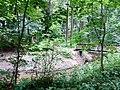 Landschaftsschutzgebiet Waldgebiete bei Dielingdorf und Handarpe LSG OS 00025 Datei 11.jpg
