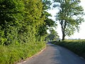 Lane at Iron Gate Lodge - geograph.org.uk - 179364.jpg