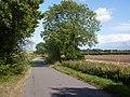 Lane near Magpie Green - geograph.org.uk - 1462416.jpg