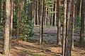 Las i wrzosy - panoramio.jpg