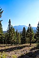 Lassen Volcanic National Park (3fdf727e-4fba-4b5b-a241-a8f9c32b0cfb).jpg