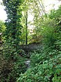 Laufbachwasserfälle Loffenau 02.jpg