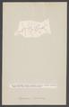 Leptomera ventricosa - - Print - Iconographia Zoologica - Special Collections University of Amsterdam - UBAINV0274 006 03 0024.tif