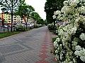 Lieninski rajon, Brest, Belarus - panoramio (114).jpg