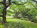 Lili'uokalani Botanical Garden - Honolulu, HI.JPG