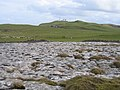 Limestone Pavement on the Great Orme - geograph.org.uk - 345790.jpg