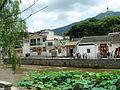 LinMaHang21.jpg
