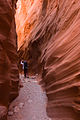 Little Death Hollow - Slot Canyon (3684307685).jpg