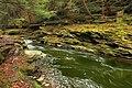 Little Rocky Glen Preserve (6) (8173797000).jpg