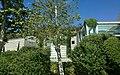 Los Angeles, CA, USA - panoramio (113).jpg
