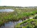 Lough Nahon - geograph.org.uk - 799324.jpg