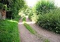 Lower Lamborough Lane, Cheriton - geograph.org.uk - 947304.jpg