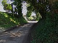 Lower Lamborough Lane - geograph.org.uk - 1207243.jpg