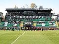 Ludogorets Arena.jpg