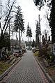 Lychakiv Cemetery (02).jpg