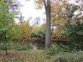 MSU 2014 Botanical Garden River Stadium.jpg