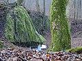 Machový vodopád ^ Mossy waterfall - panoramio.jpg