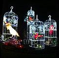 Magic Lantern Show (31770042185).jpg