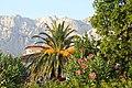Makarska - panoramio (2).jpg