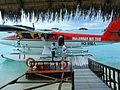 Maldivian Air Taxi 8Q-MBA.jpg