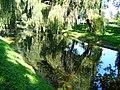 Malowniczy Kanał Obry - panoramio.jpg