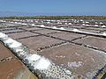 Marine water saline - Salinas del Carmen - Museo de la Sal - Fuerteventura - Canary islands - Spain - 09.jpg