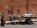 Marrakech P7018561.jpg