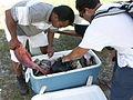 Marshall Islands PICT0207 (4745357120).jpg